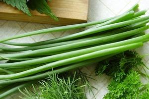 Как долго хранить зеленый лук
