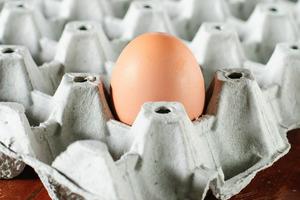 Вчені розповіли, з чим не можна їсти яйця