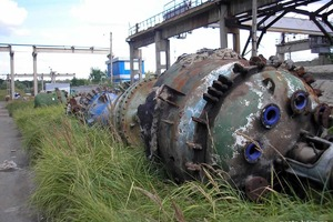 Нашли у мертвого дельфина: ртуть с завода Радикал загрязняет даже Черное море