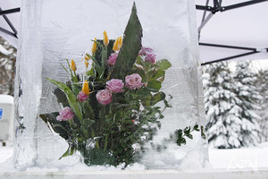 В Украину возвращаются морозы и мокрый снег