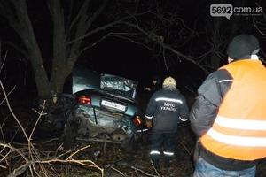 Четверо подростков насмерть разбились в Днепропетровской области