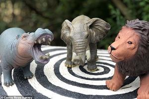 Родители бьют тревогу: у детской игрушки нашли недетский орган