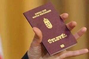 Москаль рассказал, где теперь раздают венгерские паспорта закарпатцам