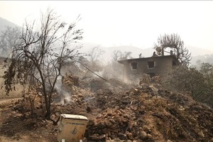 В Турции локализованы 122 из 129 лесных пожаров