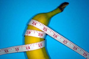 Размер пениса имеет значение для продолжения рода