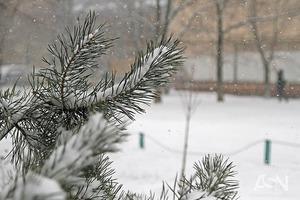 Половину Украины сегодня накроют снегопады и метели