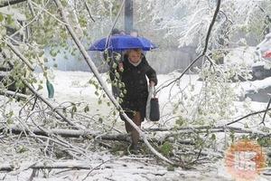 В Україну йде справжня зима, чекати недовго. Синоптики попереджають владу столиці