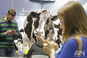 Гройсман: Не дай Бог кто-то запретит крестьянам сдавать молоко