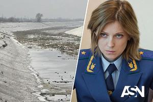 Военный преступник, гражданка Поклонская решила обратиться в ООН