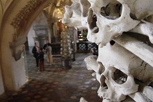 Обнаружено самое крупное захоронение в Европе
