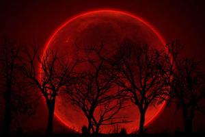 Впервые за 150 лет произойдет затмение кровавой Суперлуны