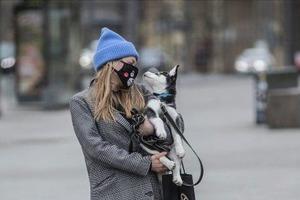 Сьогодні в Україні очікується пік холодної погоди листопада