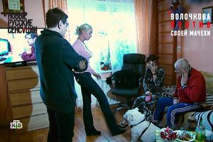 Настя, ти гі..но. Російська актриса обізвала Волочкову, яка штовхнула собаку
