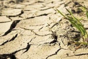 Експерт: На відновлення Криму після посухи піде 30 років