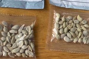 Таинственные посылки с семенами из Китая продолжают поступать в страны по всему миру