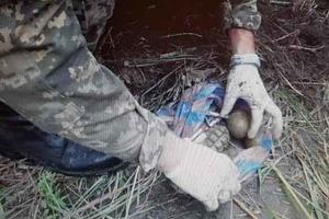 В Харькове диверсант «ДНР» хотел взорвать поезд