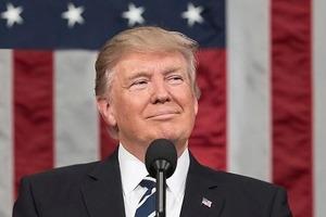 Bloomberg: Трамп согласился выслать десятки дипломатов Путина