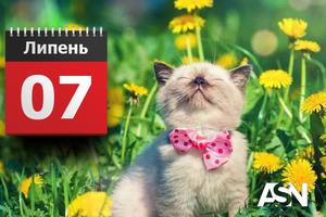 Календарь всех праздников на июль 2020