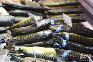 Посмотреть на чешую, понюхать и надавить: как в магазине выбирать качественную рыбу