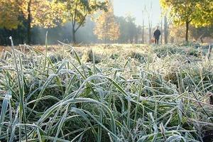 На Москву надвигаются заморозки