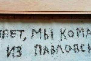 Воронежскую область доедают полчища комаров. Гибнут животные