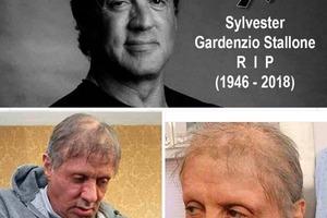 В Сети похоронили Сильвестра Сталлоне
