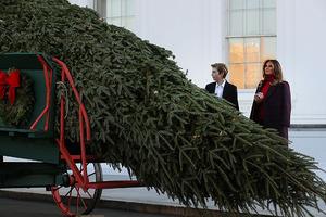 Мелания Трамп с сыном Бэрроном встретили рождественскую елку