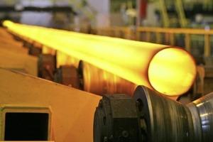 Российские СМИ активно опровергают информацию о забастовке на крупном заводе в Беларуси