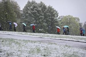 Мокрий сніг та заморозки: На Закарпатті оголосили штормове попередження