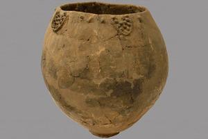 Ученые нашли самое древнее вино