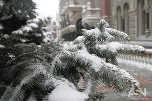 Украину засыплет мокрым снегом