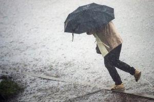 На Украину надвигается шторм: сильный ветер с дождем