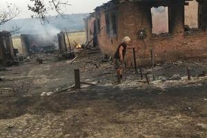 В Украине пожары уничтожают леса и села