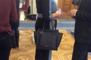 Парад дорогих сумок в Раде: глава налогового комитета показала свою Salvatore Ferragamo