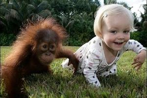 Супрун раскрыла важную информацию о том, как влияют животные на здоровье детей
