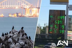 Бей своих, чтобы чужие боялись - любимая поговорка в России. Почему подорожает бензин в Крыму.