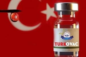 В Турции заявили о готовности к экстренному применению вакцины от COVID-19 собственного производства
