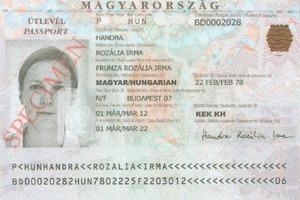 Паспортный скандал: Венгрия перешла к прямым угрозам в адрес Украины