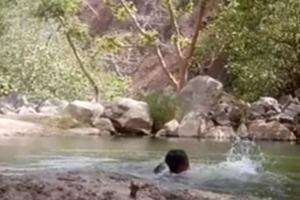 Три друга сняли на видео собственную смерть (18+)