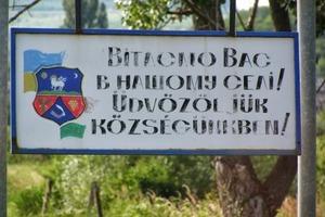 Венгрия считает Закарпатье своим и не хочет терять украинскую рабочую силу - историк