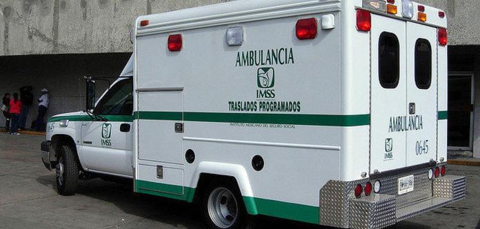 ВМексике фермер умер  после потасовки  сосвиньей, лишившись гениталий