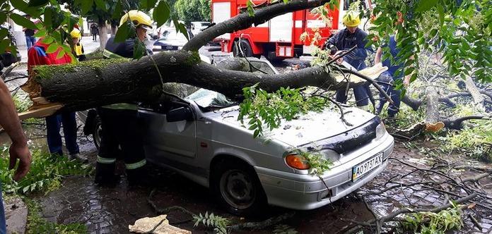 НаЗакарпатье грозовые шквалы ломали деревья исносили крыши домов