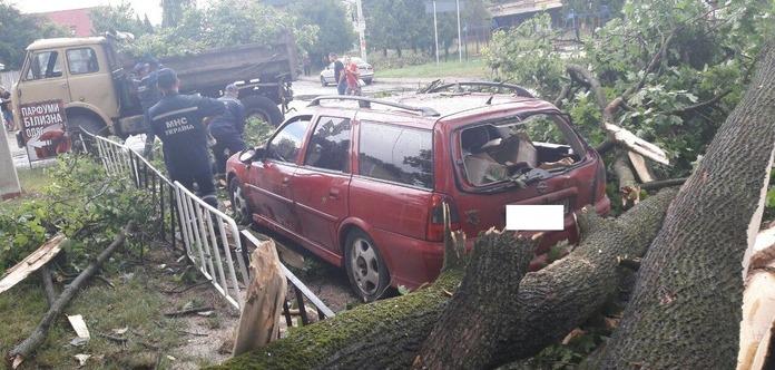 Непогода воЛьвове: повалены деревья, повреждены авто икрыши зданий