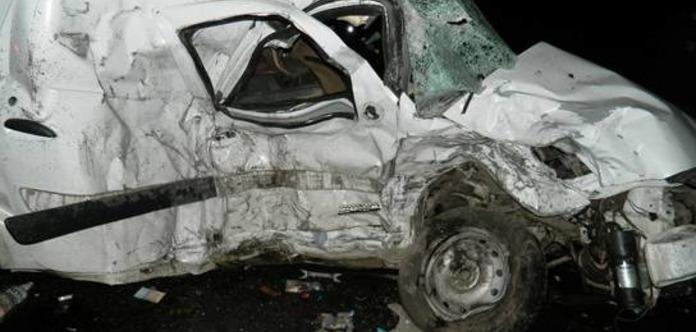Дикий кабан став причиною смертельного ДТП натрасі вКиївській області