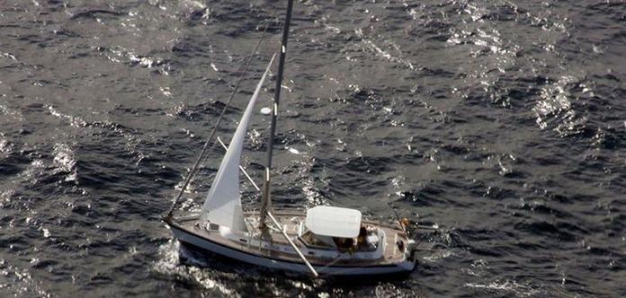 У Великій Британії яхта зіткнулася з китом і затонула
