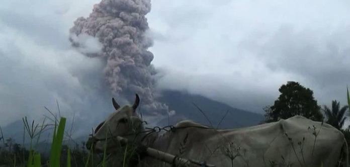 В Індонезії 8 осіб загинули внаслідок аварії рятувального вертольота