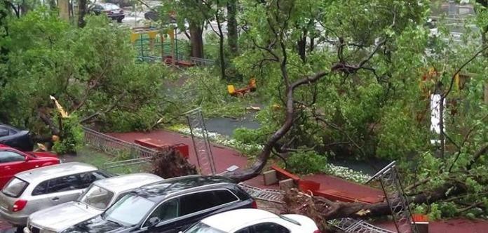 Внаслідок урагану вМосковській області загинув українець