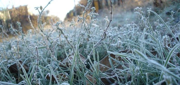 Заморозки опять возвращаются в Украину. Синоптики говорят о холодах до самого лета