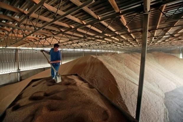 Госрезерв создает из 10 своих предприятий огромный агрохолдинг