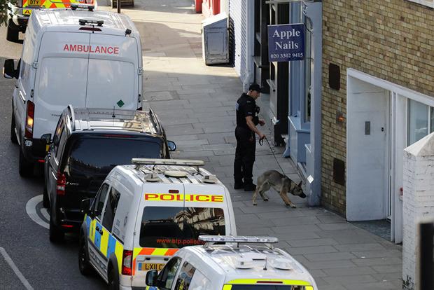 Полиция Лондона установила личность подозреваемого в совершении теракта в метро